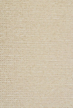 Wilson Fabric Style Broome Color Biscotti